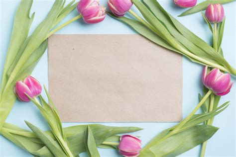 paper inside tulips border photo free