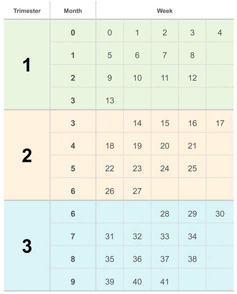 Pregnancy Calendar By Due Date How Am I And When Is My Due Date Babycenter