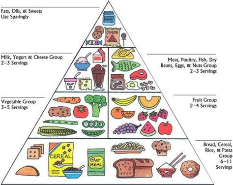 better food pyramid mrs bisby s 187 archive 187 healthy food pyramid
