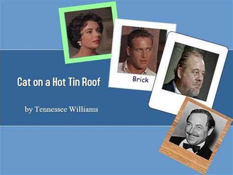 Cat On A Tin Roof Essay by Cat On A Tin Roof Authorstream