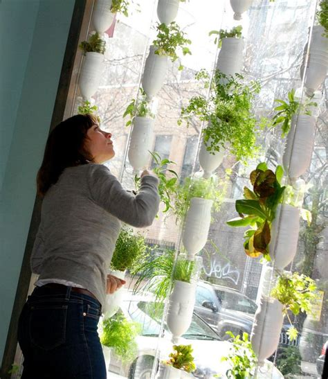 hydroponic window garden   recycled materials