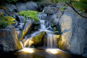 Aquascape Waterfall by Pond And Landscape Lighting Tropical Landscape