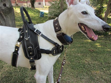 service in harness bld bah assistance harness