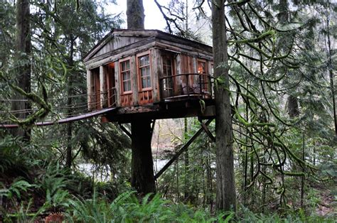 tiny tree house quaint treehouse tiny house swoon