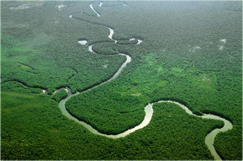 Hängesessel Amazonas by El Amazonas Depende S 225 Hara Para Mantenerse F 233 Rtil