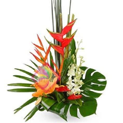 fiori esotici immagini 301 moved permanently