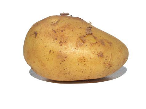 what is potato the day and of the potato simcoe organics