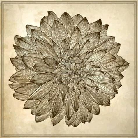 dahlia tattoo designs inspiration dahlia tattoo ideas