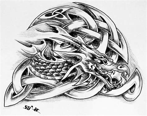 celtic dragon tattoo design celtic designs