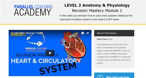 Level 2 Anatomy And Physiology Mock Exam 88 Free Questions