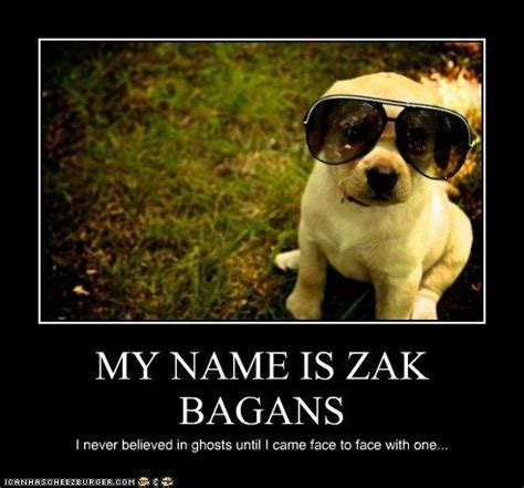 171 best images about zak bagans on pinterest | donkeys