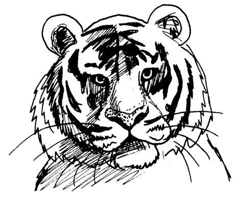 Dessin Colorier Tigre Dent De Sabre Bebe Guepard Coloriage Dessin L