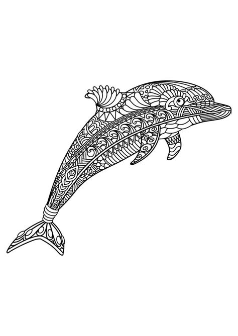 advanced dolphin coloring pages 938 best adult colouring under the sea fish mermaids