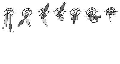 tutorial pakai dasi sma cara memakai dasi ekasyani