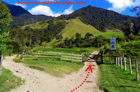 entrada valle del cocora rutas de monta 241 a cerro morrogacho valle de cocora