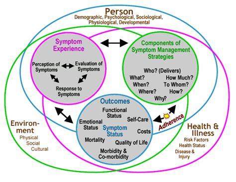 synergy model nursing theory models nursing nursing models