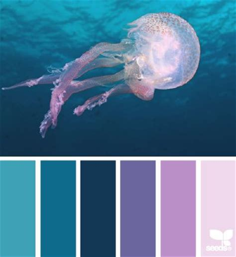 what color are jellyfish jellyfish hues design seeds colorways