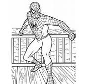 Kolorowanka Spiderman 11  E Kolorowanki Do Druku