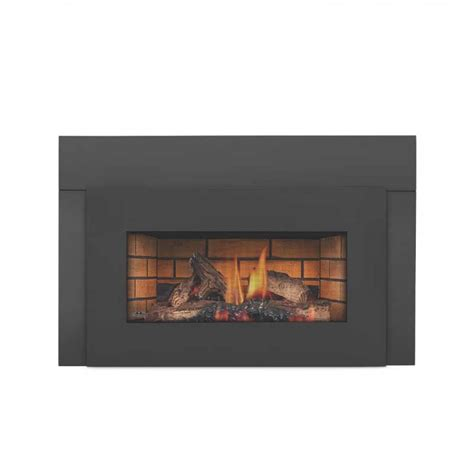glass gas fireplace inserts napoleon gi3600 4n basic gas fireplace insert w
