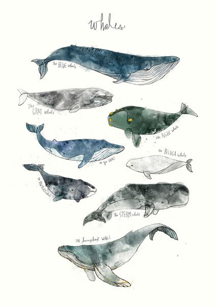 painting you can print whales canvas print by hamilton society6