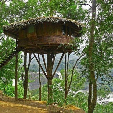 eco toilet for cing 17 best images about tree house designs on pinterest
