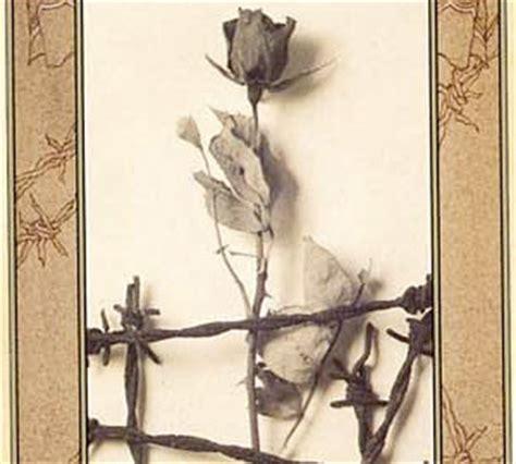 themes in briar rose jane yolen book review briar rose fandomania