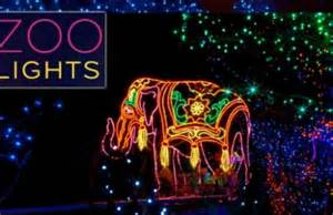 denver zoo lights schedule local sessions november 28th december 4th city