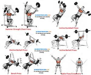 Decline Bench Results Chest Training Program For Muscle Mass Definition And