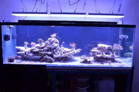 ai fish tank lights atlantik v2 1 wifi orphek akwarium oświetlenie led
