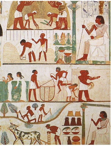 pattern of evidence exodus wiki clothing in ancient egypt wikipedia
