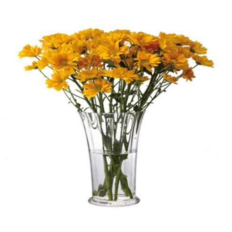 Chrysanthemum Vase by Dartington Florabundance Chrysanthemum Vase