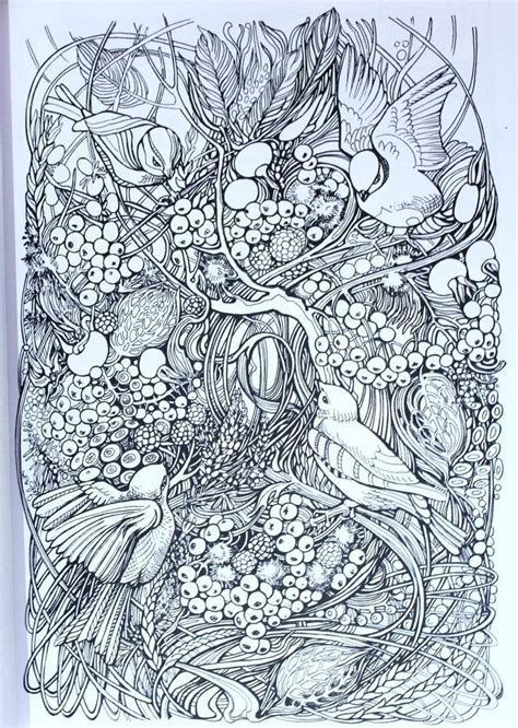 libro manic botanic zifflins coloring manic botanic images coloring books on doodle invasion zifflins coloring book by zifflin kerby