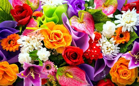 flower color colorful bouquet wallpapers flowers wallpapers colors
