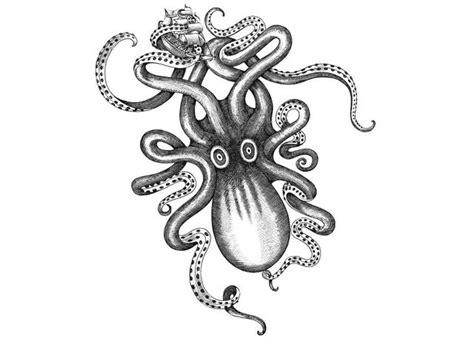 steven noble illustrations kraken