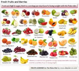 the paleo diet eating modern daily foods in the paleolithic lifestyle page 2 of 2 diet plan 101