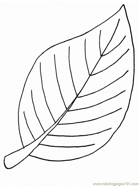 Flower Leaf Coloring Page | leaf color pages coloring home