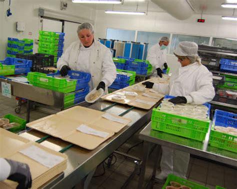 cuisine hopital le t 233 l 233 gramme lorient ville h 244 pital une cuisine