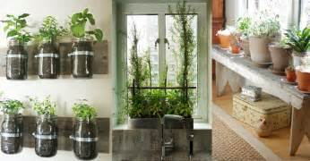 6 indoor gardening ideas cultivator