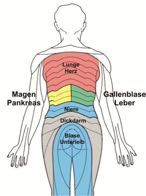 innere unruhe druck auf der brust r 252 ckenschmerzen h 252 ft und knieprobleme unbeachtete
