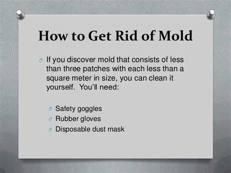 how to rid your home of harmful mold