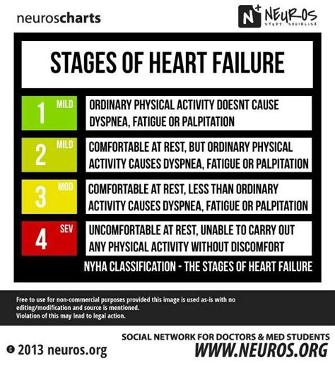 congestive failure stages 25 best ideas about stages of failure on registered
