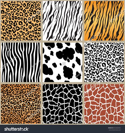 cute africa pattern animal skin seamless pattern set vector stock vector