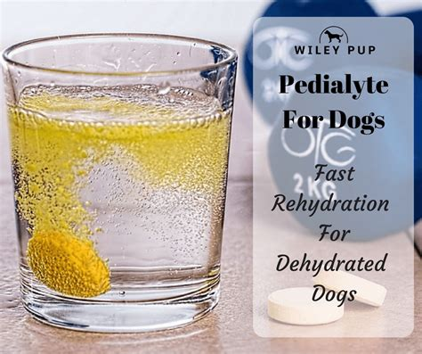 is pedialyte for dogs pedialyte for dogs fast acting re hydration wileypup