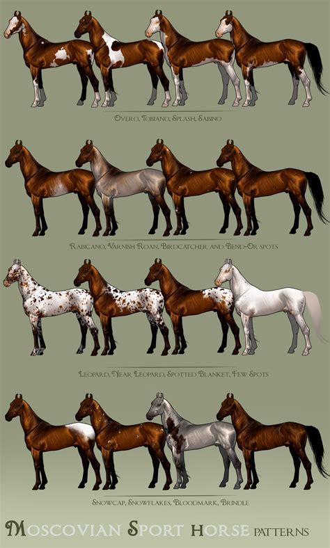 pattern horse moscovian sport horse patterns by bh stables on deviantart