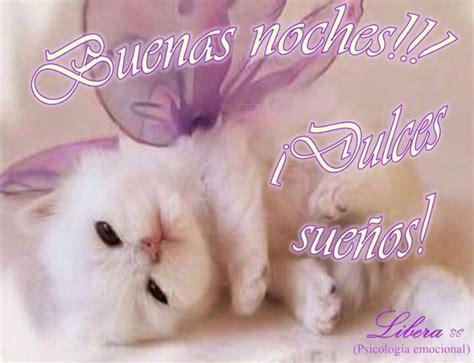 imagenes buenas noches de gatitos buenas noches cat gatos pinterest