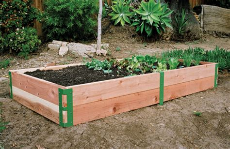 winter landscaping ideas  options gardening tips