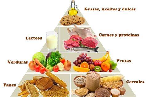 cadena en ingles que significa piramide alimenticia significado una buena alimentaci 243 n