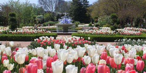 Best Botanical Gardens In The Us Best Botanical Garden In The Us Atlanta Competes For Top Spot Wabe 90 1 Fm