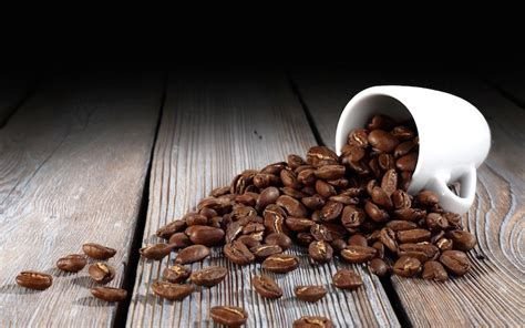 tips  kamu tak keliru membeli kopi majalah otten coffee