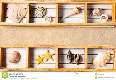 Marine Shelf marine shelf stock photo image 57393639